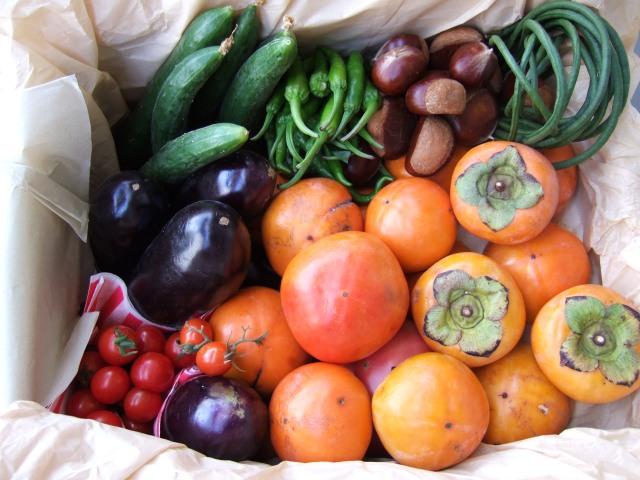 shukaku_no_aki_autumn_fruit_vegetables.jpg