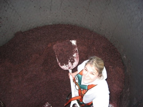 Sara helmers of The Lucas Winery shoveling grape pumice, which is left in the tank after the grapes have fermented and the wine has been drained away.
